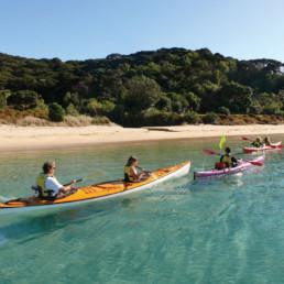 New Zealand - Bay of Islands - Northland Adventure