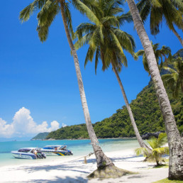 Thailand Samui